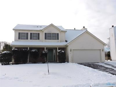 Holland Single Family Home For Sale: 7713 Ginger Gold Drive