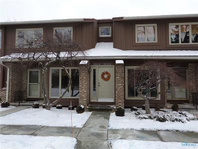 Perrysburg Condo/Townhouse Contingent: 10246 Ford Road