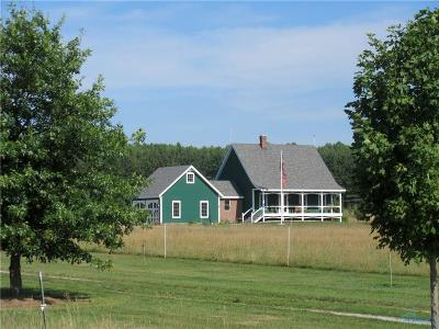 Single Family Home For Sale: 11242 County Road 17
