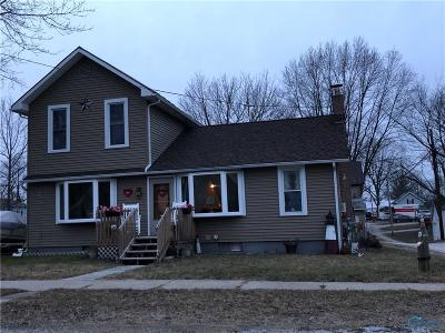 Grand Rapids Single Family Home For Sale: 17781 Bridge Street