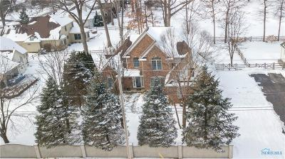 Holland Single Family Home Contingent: 448 S Centennial Road