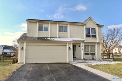 Perrysburg Single Family Home For Sale: 672 Indian Wells Lane