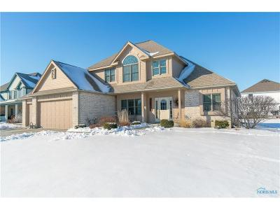 Single Family Home For Sale: 973 Reeves Court