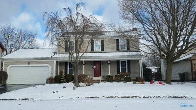 Maumee Single Family Home For Sale: 6460 Danny Lane