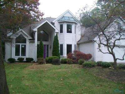 Holland Single Family Home Contingent: 8300 Country Brook Drive