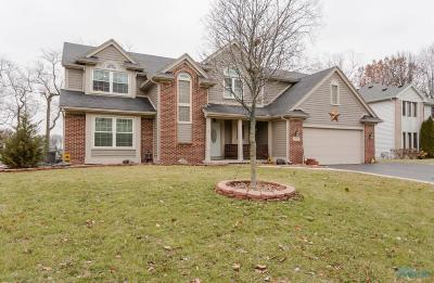Holland Single Family Home For Sale: 2212 White Oak Court
