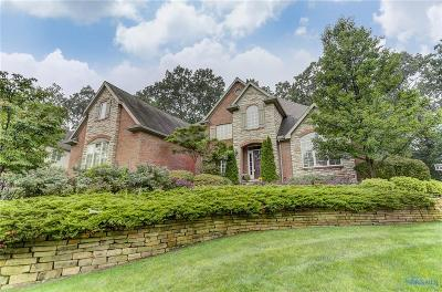 Sylvania Single Family Home For Sale: 4641 Crosstick Court