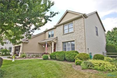 Holland Single Family Home For Sale: 7022 Wexford Hill Lane