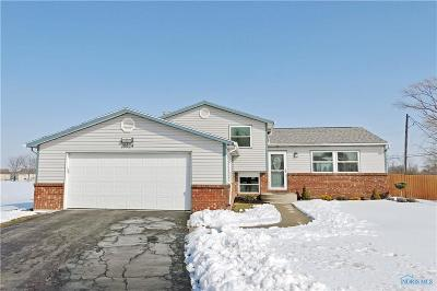 Perrysburg Single Family Home Contingent: 28824 Stargate