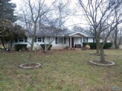 Holland Single Family Home For Sale: 1061 S Crissey Road