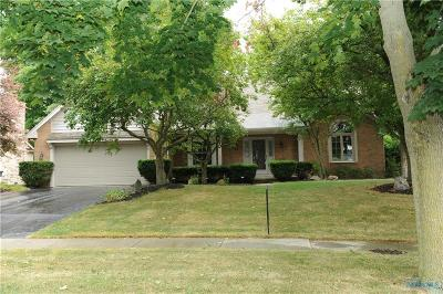 Holland Single Family Home For Sale: 7265 Sawmill Run