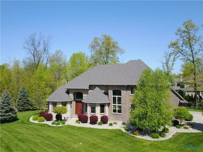 Sylvania Single Family Home Contingent: 9132 Beautiful Lane
