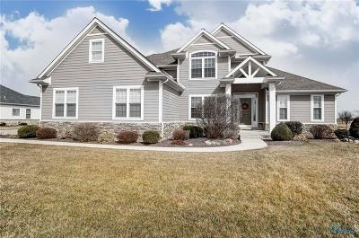 Lucas County Single Family Home For Sale: 5203 Eagles Landing Drive
