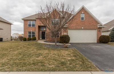 Sylvania Single Family Home Contingent: 5601 Clear Creek Court