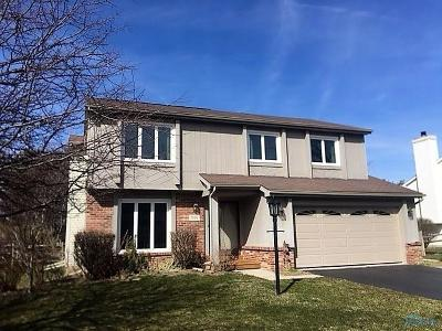 Holland Single Family Home For Sale: 7056 Wexford Hill Lane