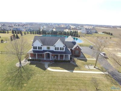 Sylvania Single Family Home For Sale: 9227 Brint Road