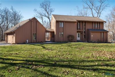 Perrysburg Single Family Home For Sale: 25871 W River Road