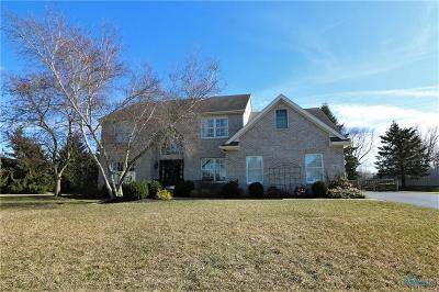 Sylvania Single Family Home Contingent: 7521 Red Pines Drive