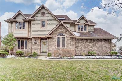 Sylvania Single Family Home For Sale: 7603 Kings Run Road