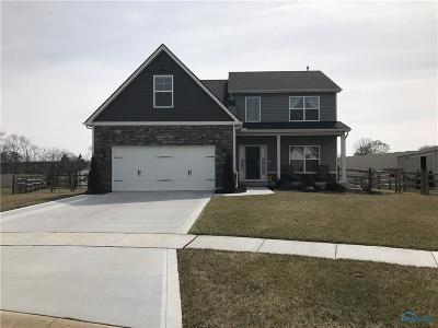 Holland Single Family Home For Sale: 154 Hidden Village Court