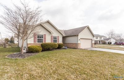 Holland Single Family Home Contingent: 6868 Wild River Run Court