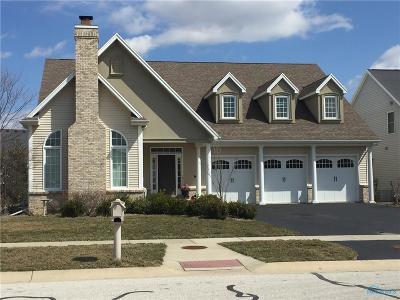 Sylvania Single Family Home For Sale: 5908 Walnut Springs Road