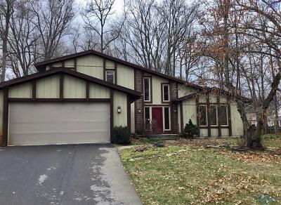 Sylvania Single Family Home For Sale: 7149 Bog Hollow Road