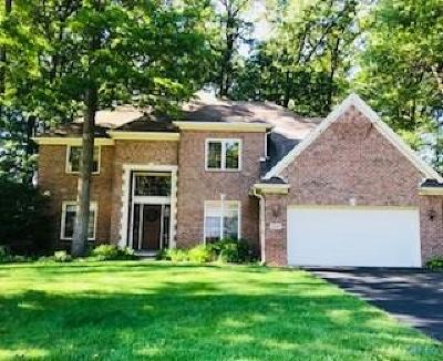Holland Single Family Home For Sale: 8520 Royal Birkdale Lane