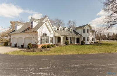 Perrysburg Single Family Home For Sale: 26622 W River Road