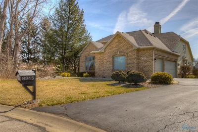 Holland Single Family Home For Sale: 8945 Rolling Hill Road