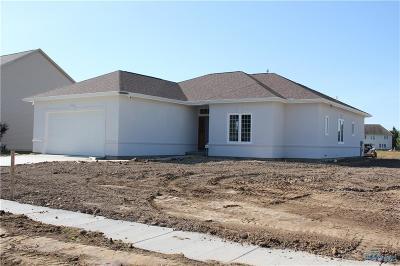 Sylvania Single Family Home For Sale: 8816 White Eagle E