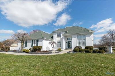 Perrysburg Single Family Home For Sale: 9800 Sheffield Road