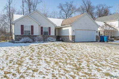 Holland Single Family Home Contingent: 6927 Running Brook Way