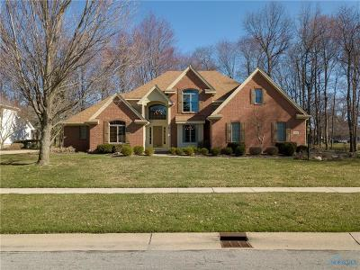 Holland Single Family Home Contingent: 8954 Sand Ridge Drive