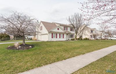 Perrysburg Single Family Home For Sale: 625 Streamview Drive