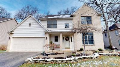 Holland Single Family Home For Sale: 8308 Hidden Forest Drive
