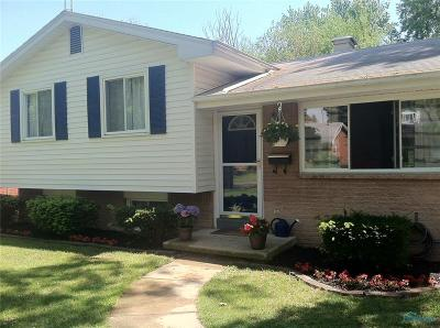 Toledo Single Family Home For Sale: 2341 Ann Drive