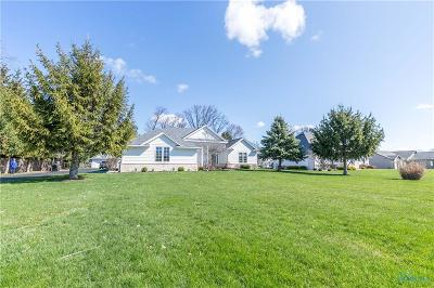 Maumee Single Family Home For Sale: 7762 Maumee Western Road