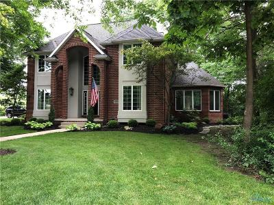 Perrysburg Single Family Home Contingent: 29023 Belmont Lake Road