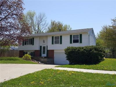Perrysburg Single Family Home For Sale: 135 Southwood Drive