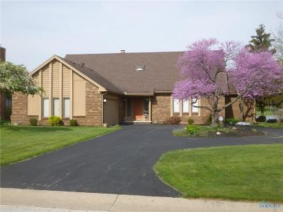 Perrysburg Single Family Home For Sale: 29431 Belmont Lake Road