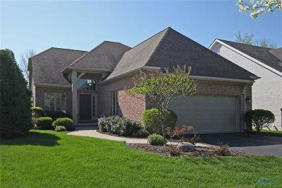 Perrysburg Single Family Home For Sale: 9540 Sheffield Road