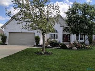 Sylvania Single Family Home For Sale: 8951 White Eagle E.