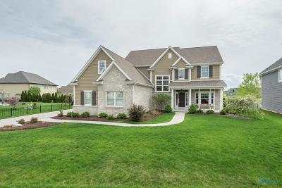 Sylvania Single Family Home Contingent: 5673 Anchor Hills Drive