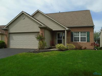 Maumee Single Family Home For Sale: 7000 Shore View Court