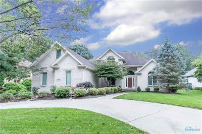 Holland Single Family Home For Sale: 9059 Rolling Hill Road