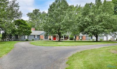 Perrysburg Single Family Home For Sale: 24591 W River Road