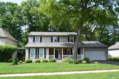 Holland Single Family Home For Sale: 8240 Hidden Forest Drive