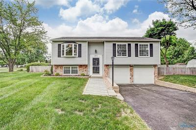 Perrysburg Single Family Home Contingent: 28850 Starlight Road