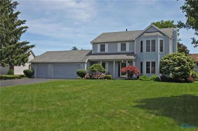 Holland Single Family Home Contingent: 2323 Mill Race Court
